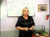 Презентация возможностей Орифлейм от Ирины Волковой